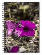 Bee To A Flower Spiral Notebook