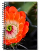 Bee Ware The Thorns Spiral Notebook