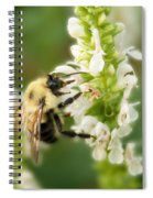 'bee'autiful Morning Spiral Notebook
