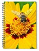Beeautiful Spiral Notebook