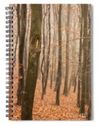 Beech Wood In Autumn Spiral Notebook