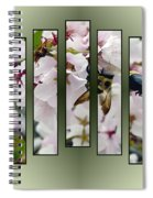 Bees And Blossoms Spiral Notebook