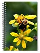 Bees At Work Spiral Notebook
