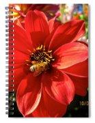 Bee's Dahlia Delight Spiral Notebook