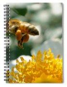 Bee's Feet Spiral Notebook