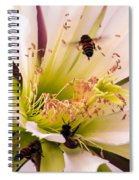 Bees In Blossom Spiral Notebook