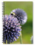 Bees On Globes Spiral Notebook
