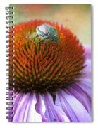 Beetle Bug Spiral Notebook