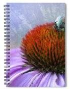 Beetlemania Spiral Notebook
