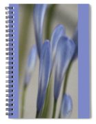 Before - Lily Of The Nile Spiral Notebook