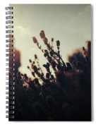 Before Love II Spiral Notebook