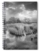 Before The Big Storm Mono Spiral Notebook