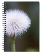 Before The Wind Blows Spiral Notebook