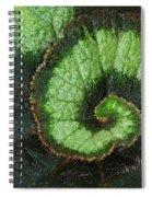 Begonia Leaf 2 Spiral Notebook