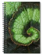 Begonia Leaf 2 Spiral Notebook