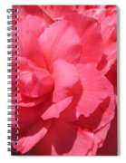 Begonia Named Non-stop Pink Spiral Notebook