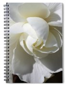 Begonia Named Nonstop Apple Blossom Spiral Notebook