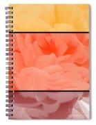 Begonia Petals Triptych Spiral Notebook