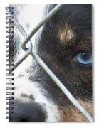 Behind Fences Spiral Notebook