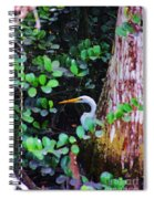 Behind The Tree Spiral Notebook