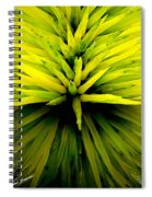 Being Green Spiral Notebook
