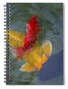 Being Koi 2 Spiral Notebook