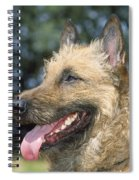 Belgian Laekenois Dog Spiral Notebook