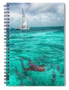 Belize Turquoise Shark N Sail  Spiral Notebook