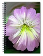 Bellissimo Spiral Notebook