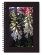 Bells Of Beauty Spiral Notebook
