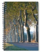 Beloved Plane Trees Spiral Notebook