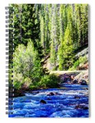 Belt Creek Spiral Notebook