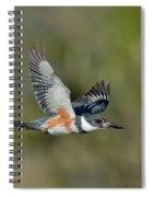 Belted Kigfisher Female Flying Spiral Notebook