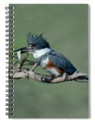 Belted Kingfisher Hen With Fish Spiral Notebook