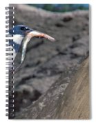 Belted Kingfisher With Prey Spiral Notebook