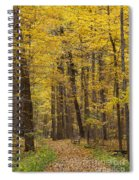 Bench In Fall Color Spiral Notebook