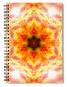 Bending Light Spiral Notebook