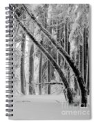 Bending Snow Trees Spiral Notebook