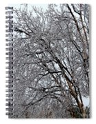 Bending With Ice Spiral Notebook