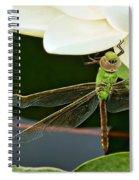 Beneath Spiral Notebook