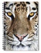 Bengal Tiger Eyes Spiral Notebook
