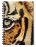 Bengal Tiger Face Spiral Notebook