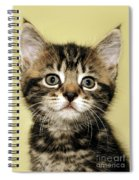 Benny The Pussy Cat Spiral Notebook