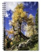 Bent Tree Spiral Notebook