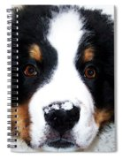 Bernese Mountain Dog - Baby It's Cold Outside Spiral Notebook