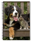 Bernese Mountain Puppy & Kitten Spiral Notebook