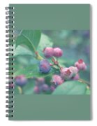 Berries For You Spiral Notebook