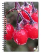 Berries In Ice Spiral Notebook