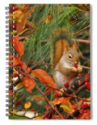 Berry Loving Squirrel Spiral Notebook