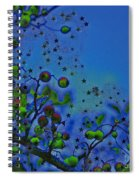 Berry Sky Magic By Jrr Spiral Notebook